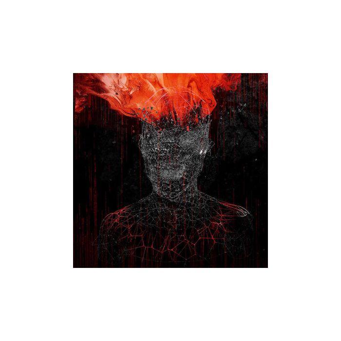 MYGRAIN - V / CD
