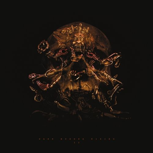 DARK BUDDHA RISING - II / LP