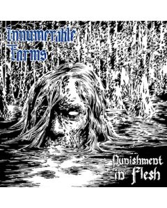 INNUMERABLE FORMS - Punishment In Flesh / CD