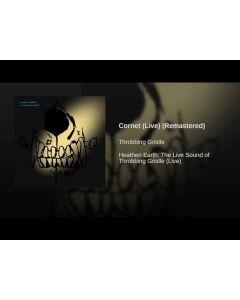THROBBING GRISTLE - Heathen Earth: The Live Sound of Throbbing Gristle / LP
