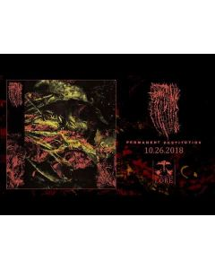HISSING - Permanent Destitution / CD