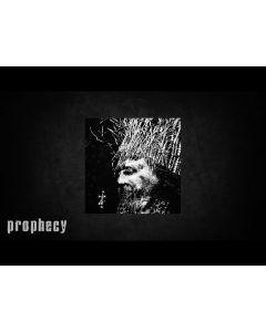 NEGURA BUNGET - Zi / LP