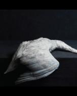 AMENRA - Mass VI / LP